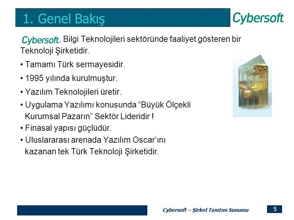 1. Genel Bakış , Bilgi Teknolojileri sektöründe faaliyet gösteren bir Teknoloji Şirketidir. Tamamı Türk sermayesidir.