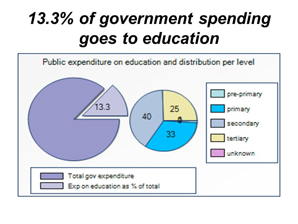 13.3% of government spending goes to education