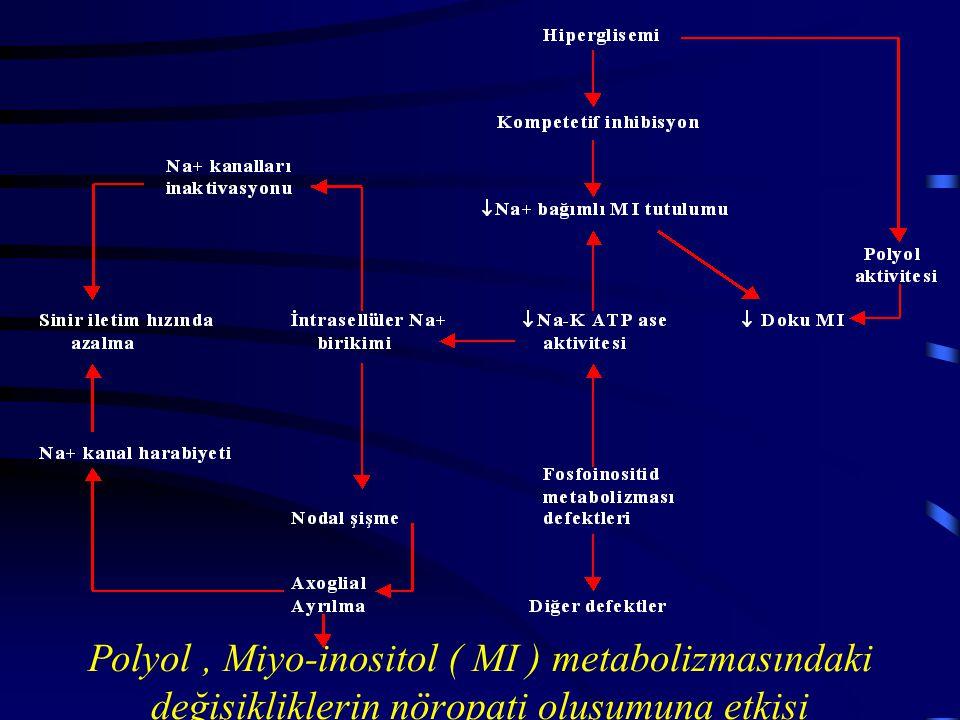 Polyol , Miyo-inositol ( MI ) metabolizmasındaki değişikliklerin nöropati oluşumuna etkisi