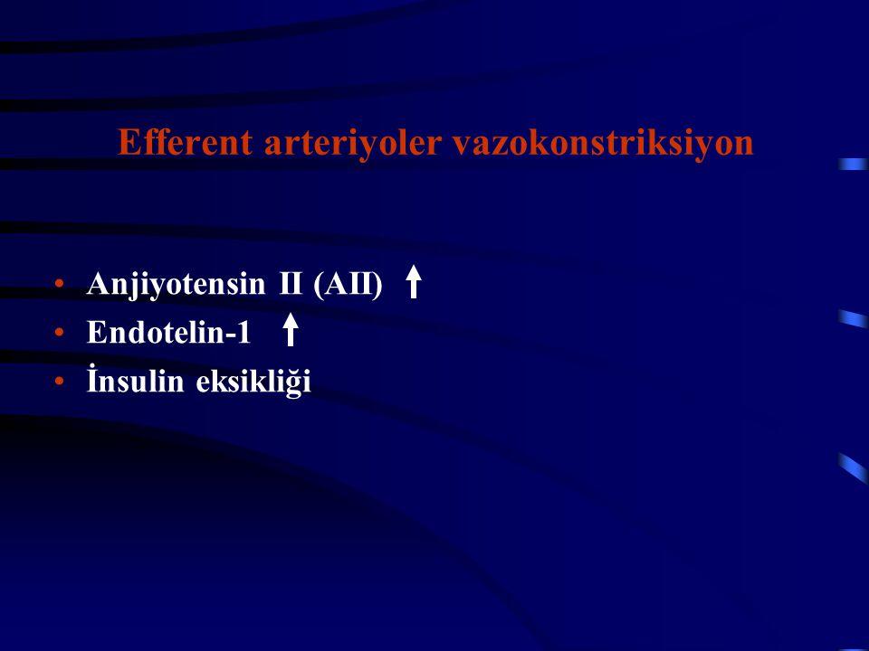 Efferent arteriyoler vazokonstriksiyon
