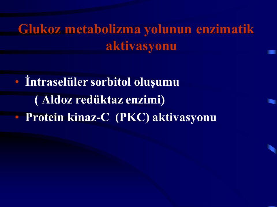 Glukoz metabolizma yolunun enzimatik aktivasyonu