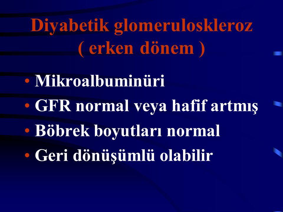 Diyabetik glomeruloskleroz ( erken dönem )