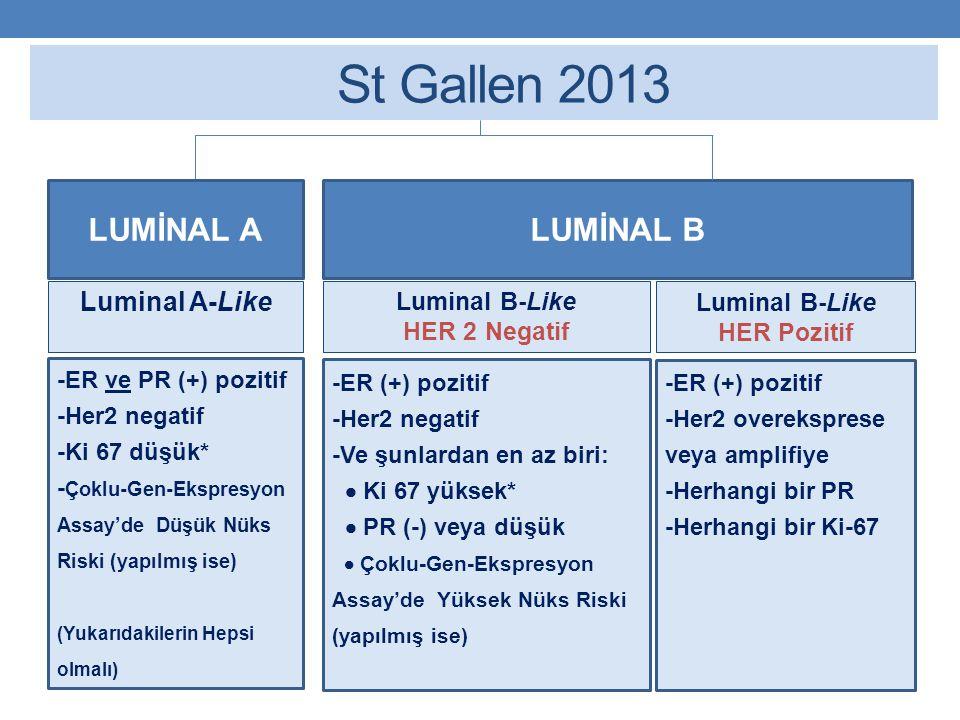 St Gallen 2013 LUMİNAL A LUMİNAL B Luminal A-Like Luminal B-Like