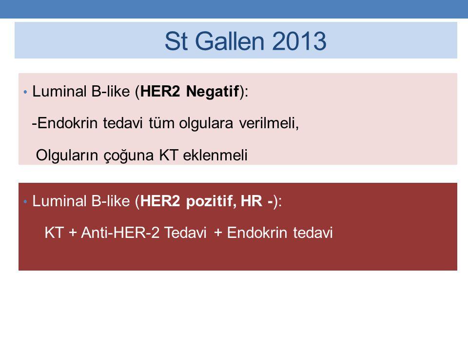 St Gallen 2013 Luminal B-like (HER2 Negatif):