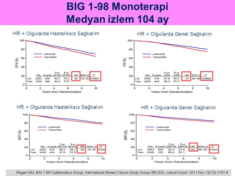 BIG 1-98 Monoterapi Medyan izlem 104 ay