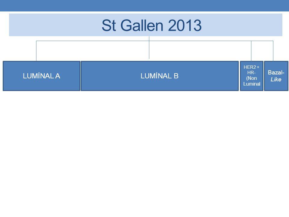 St Gallen 2013 LUMİNAL A LUMİNAL B HER2 + HR- (Non Luminal Bazal-Like