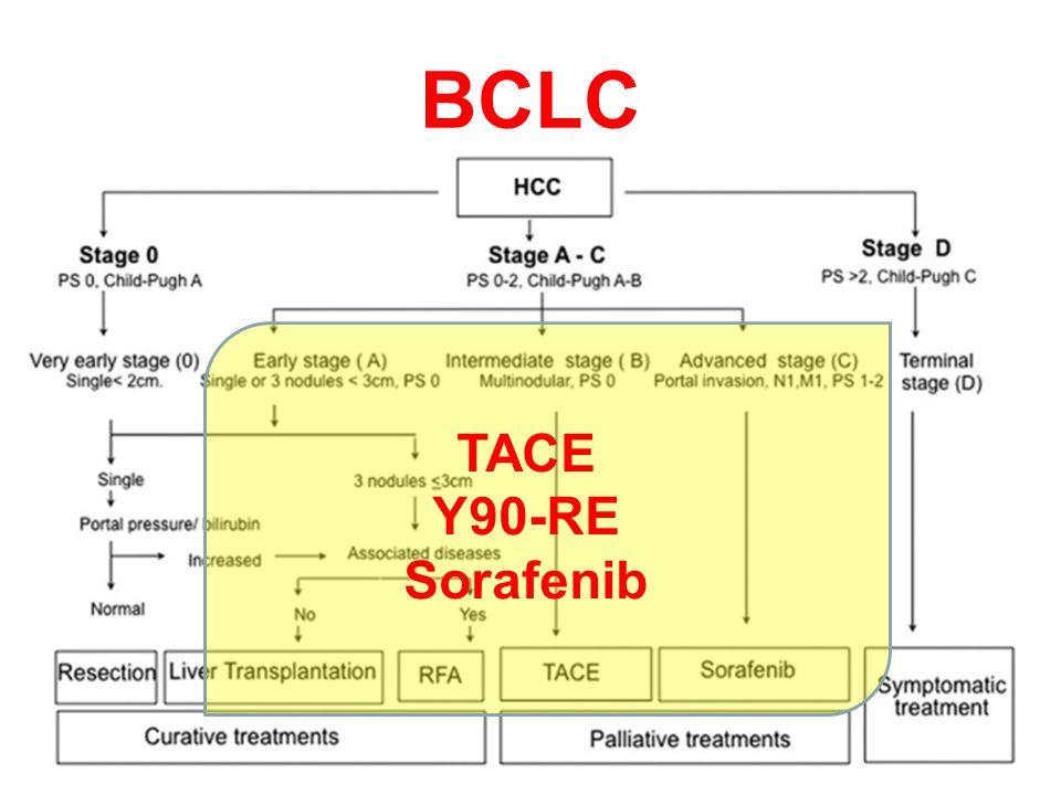 BCLC TACE Y90-RE Sorafenib