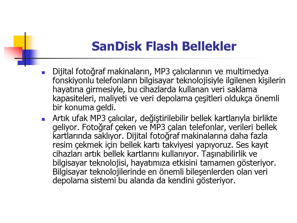 SanDisk Flash Bellekler
