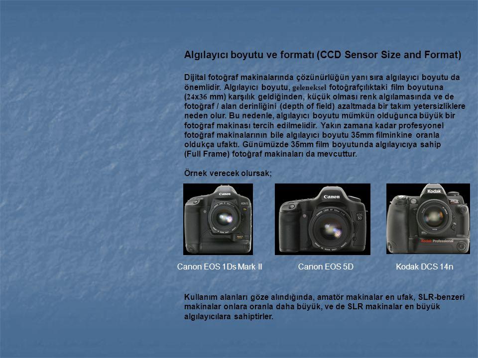 Algılayıcı boyutu ve formatı (CCD Sensor Size and Format)