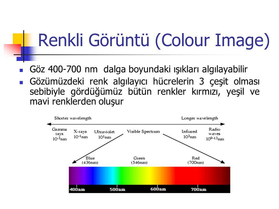 Renkli Görüntü (Colour Image)