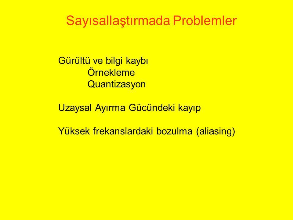 Sayısallaştırmada Problemler