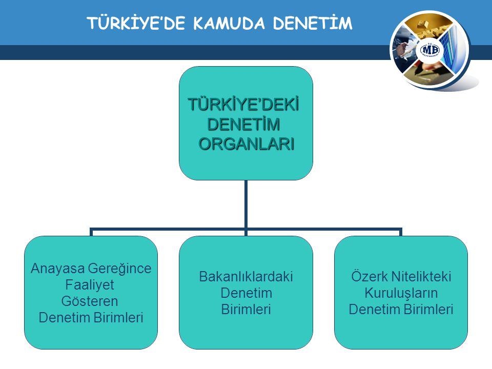 TÜRKİYE'DE KAMUDA DENETİM
