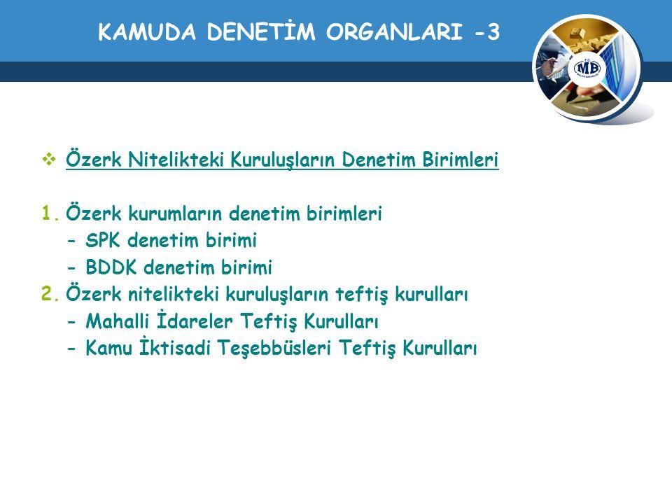 KAMUDA DENETİM ORGANLARI -3