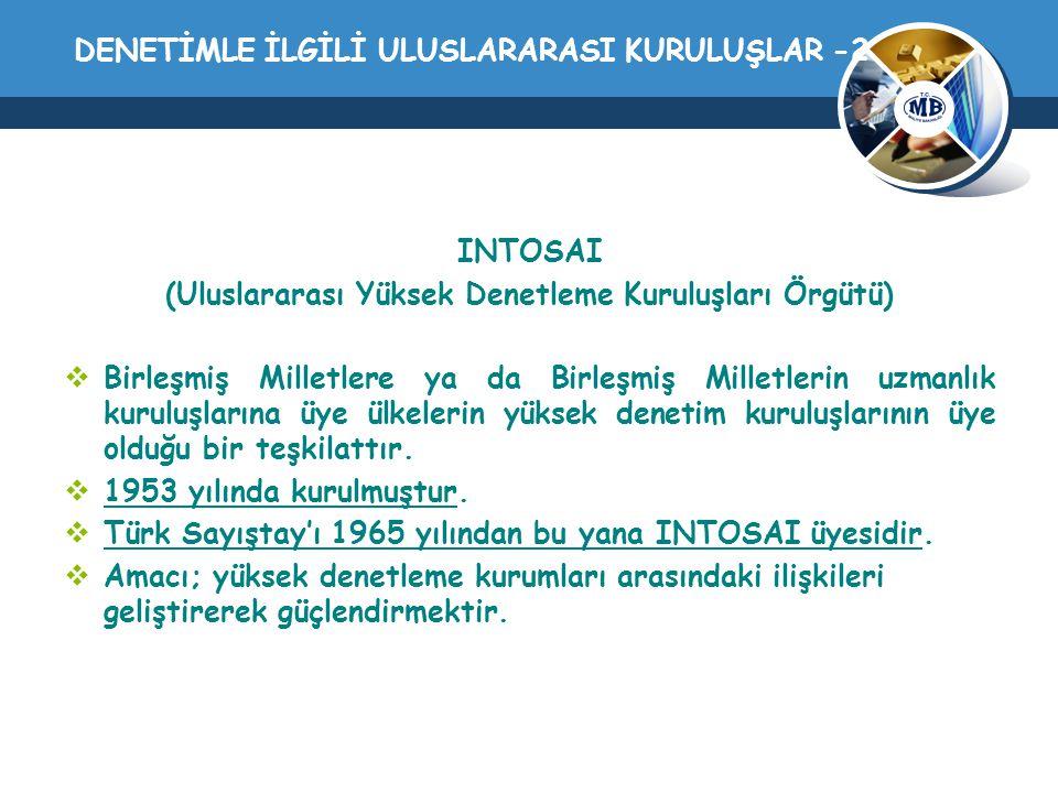 DENETİMLE İLGİLİ ULUSLARARASI KURULUŞLAR -2