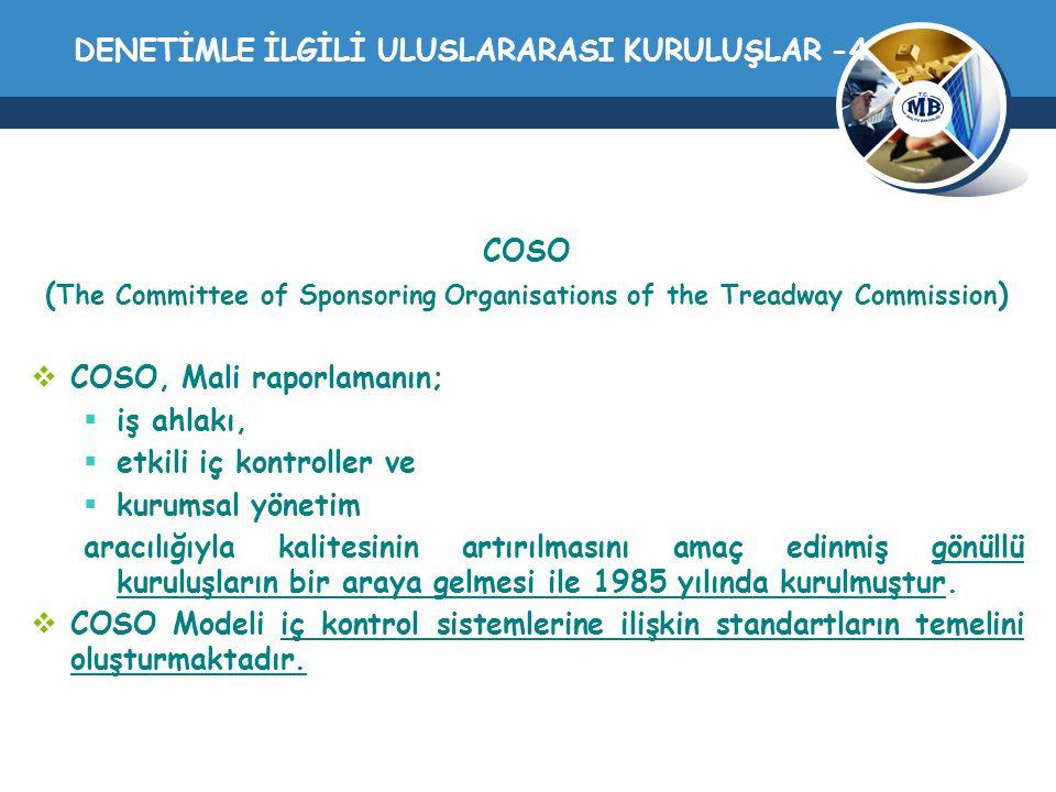DENETİMLE İLGİLİ ULUSLARARASI KURULUŞLAR -4