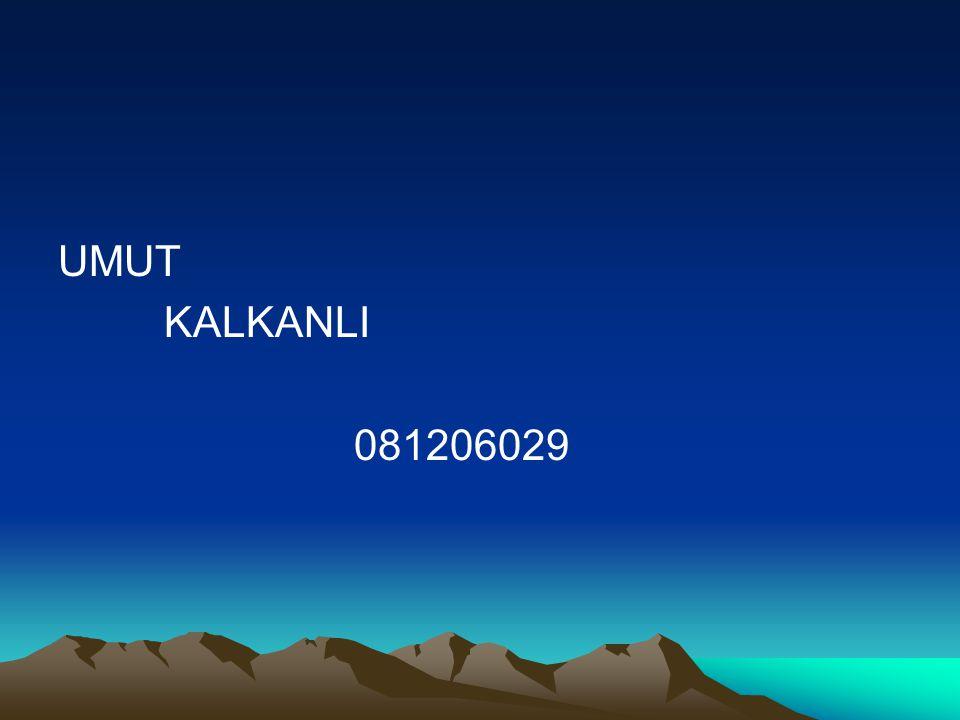 UMUT KALKANLI 081206029