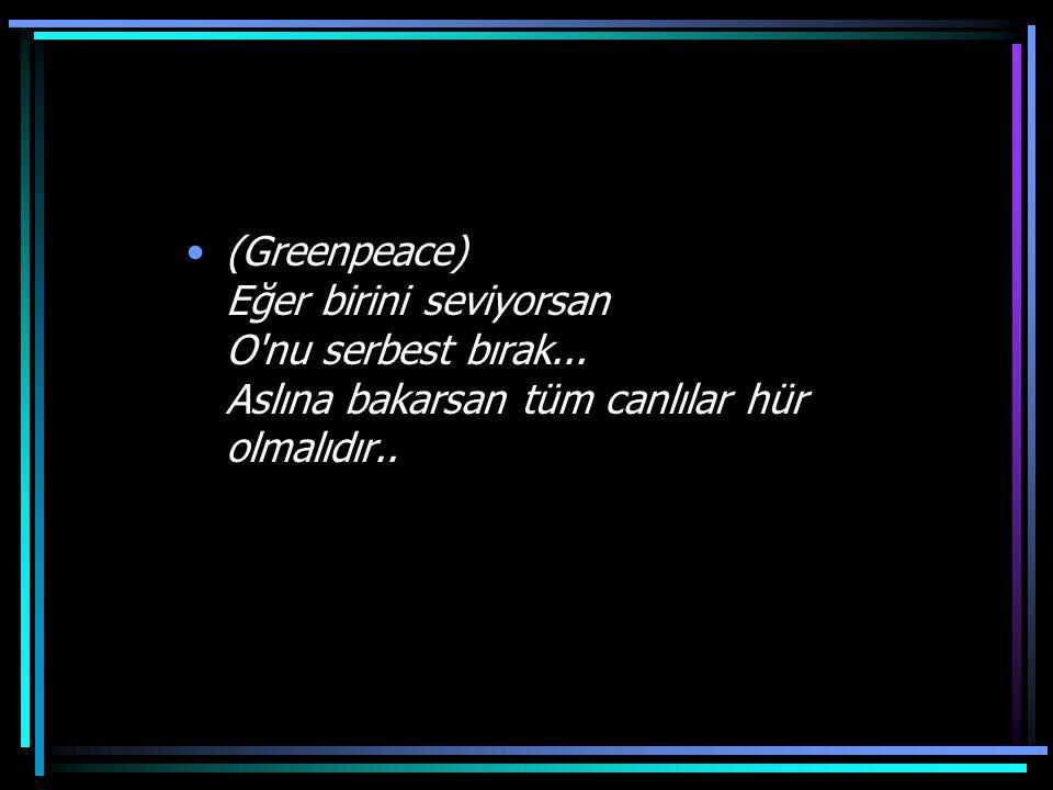 (Greenpeace) Eğer birini seviyorsan O nu serbest bırak