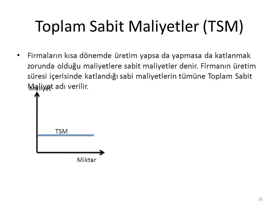 Toplam Sabit Maliyetler (TSM)