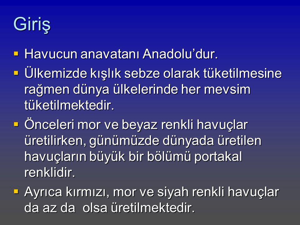 Giriş Havucun anavatanı Anadolu'dur.