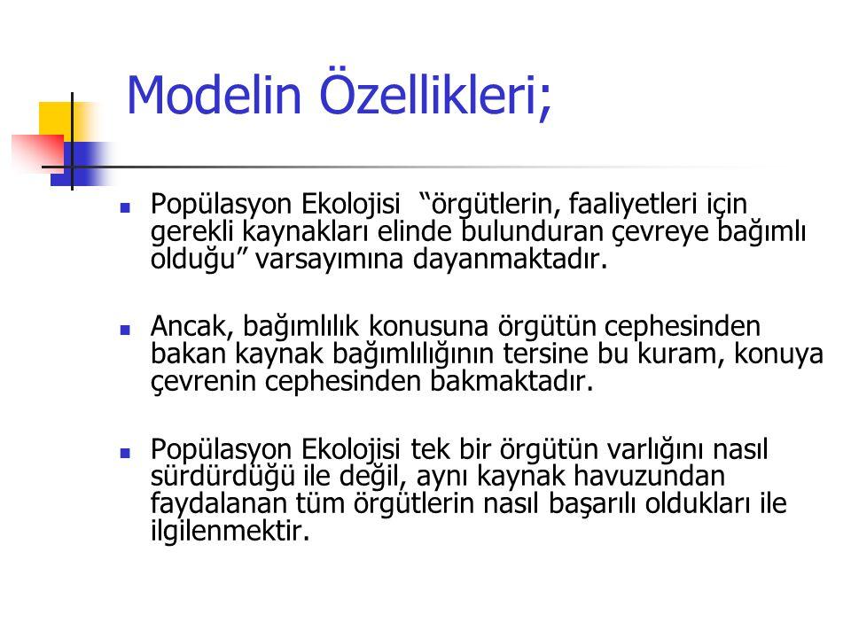 Modelin Özellikleri;