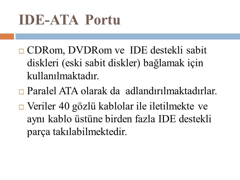 IDE-ATA Portu CDRom, DVDRom ve IDE destekli sabit diskleri (eski sabit diskler) bağlamak için kullanılmaktadır.