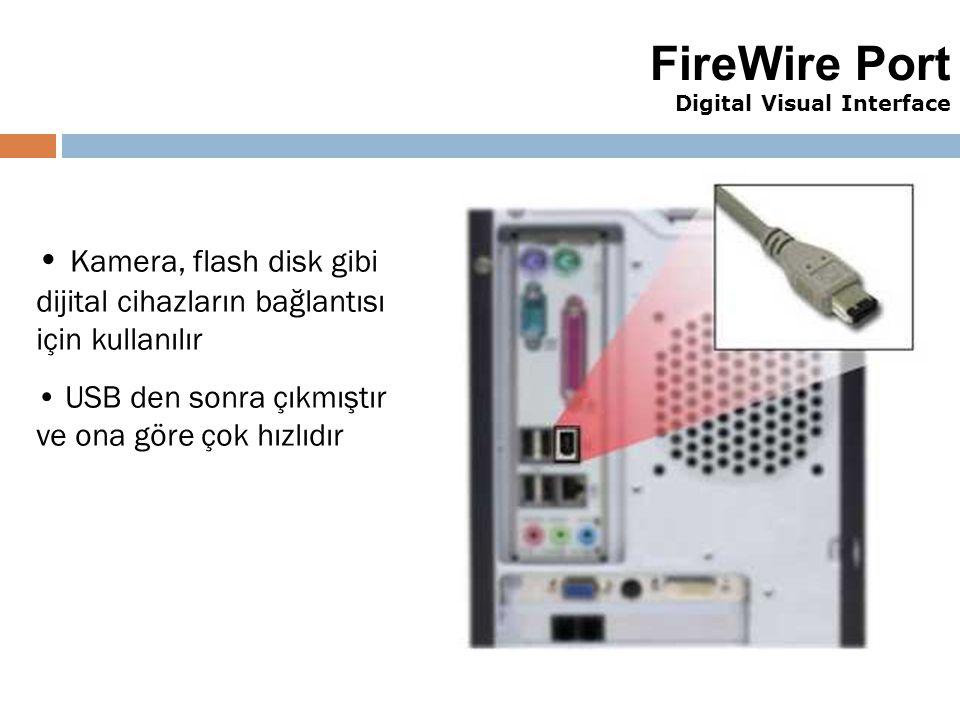 FireWire Port Digital Visual Interface