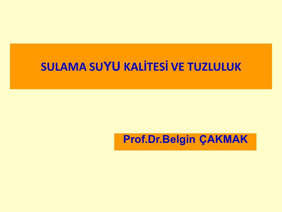 SULAMA SUYU KALİTESİ VE TUZLULUK