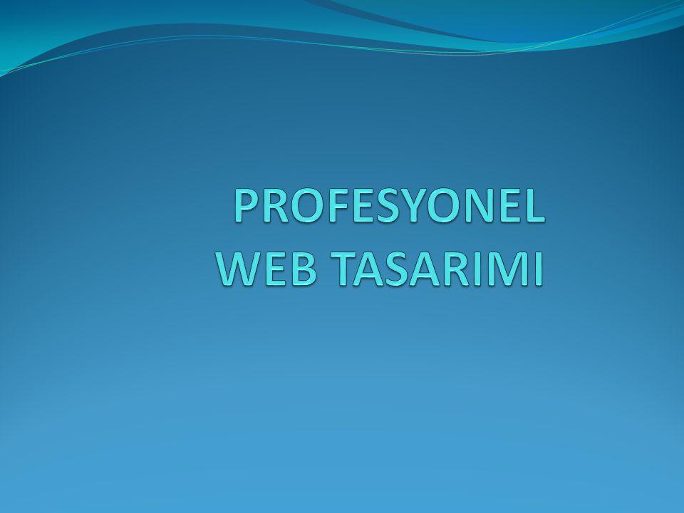 PROFESYONEL WEB TASARIMI