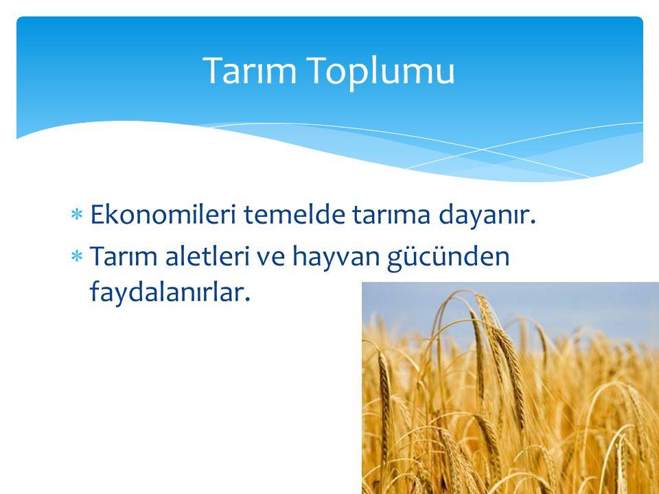 Tarım Toplumu Ekonomileri temelde tarıma dayanır.
