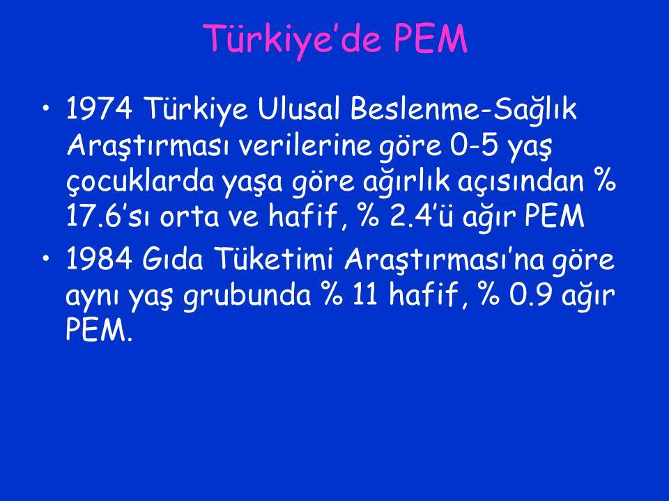 Türkiye'de PEM