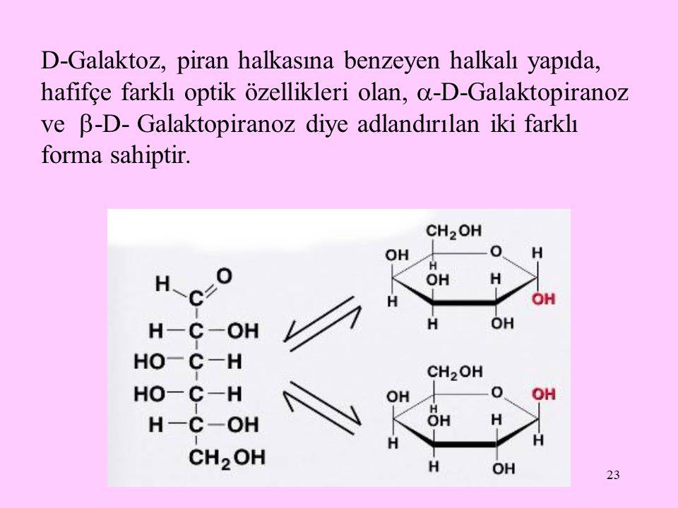 D-Galaktoz, piran halkasına benzeyen halkalı yapıda, hafifçe farklı optik özellikleri olan, -D-Galaktopiranoz ve -D- Galaktopiranoz diye adlandırılan iki farklı forma sahiptir.