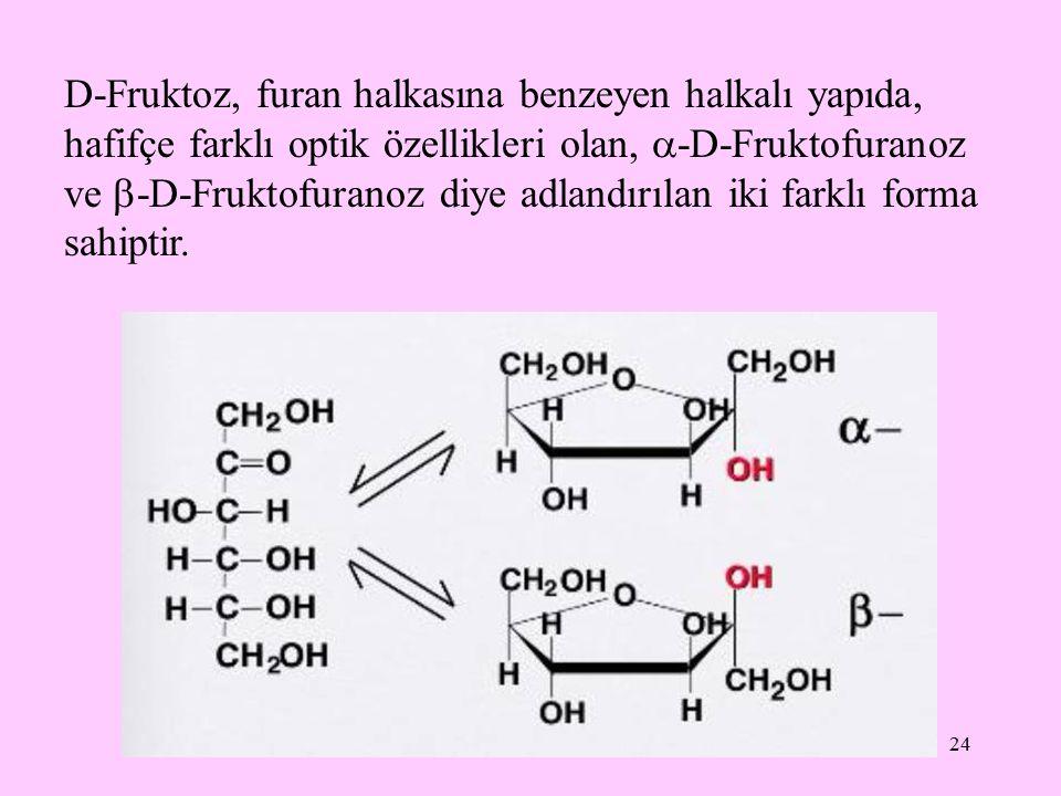 D-Fruktoz, furan halkasına benzeyen halkalı yapıda, hafifçe farklı optik özellikleri olan, -D-Fruktofuranoz ve -D-Fruktofuranoz diye adlandırılan iki farklı forma sahiptir.