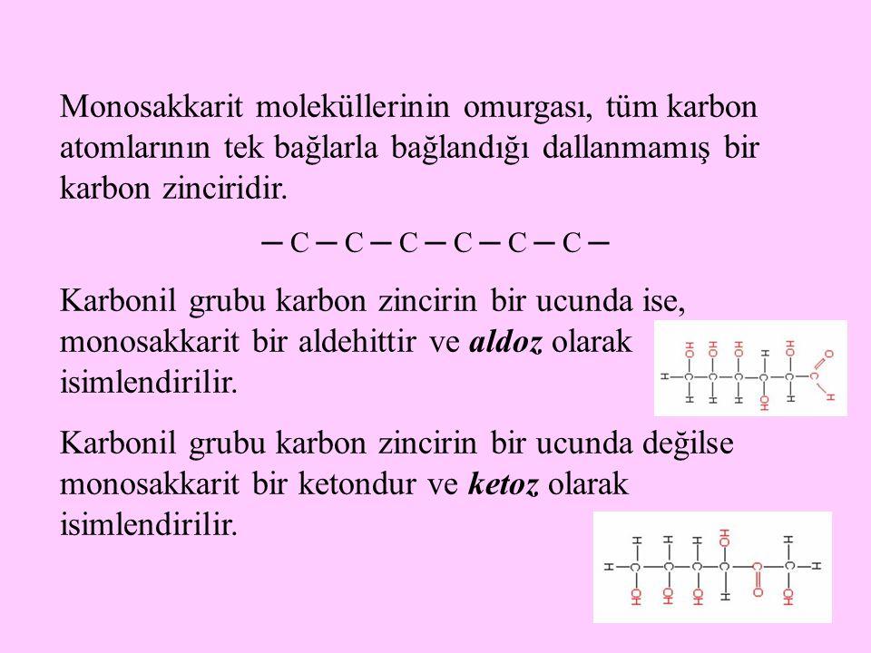 Monosakkarit moleküllerinin omurgası, tüm karbon atomlarının tek bağlarla bağlandığı dallanmamış bir karbon zinciridir.
