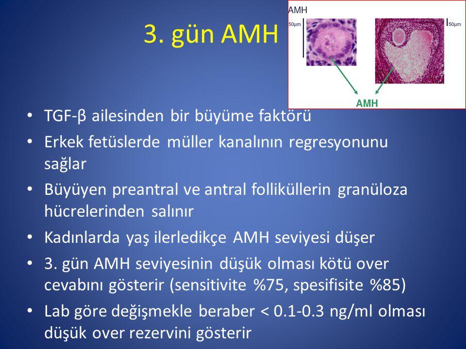 3. gün AMH TGF-β ailesinden bir büyüme faktörü