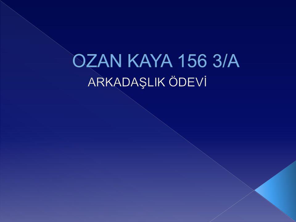OZAN KAYA 156 3/A ARKADAŞLIK ÖDEVİ