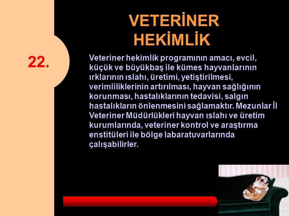 22. VETERİNER HEKİMLİK.