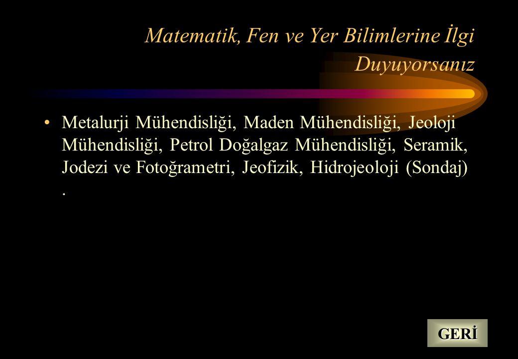 Matematik, Fen ve Yer Bilimlerine İlgi Duyuyorsanız