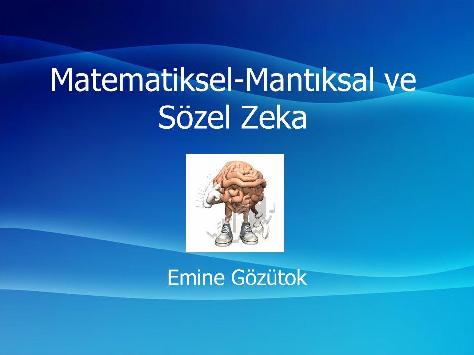 Matematiksel-Mantıksal ve Sözel Zeka
