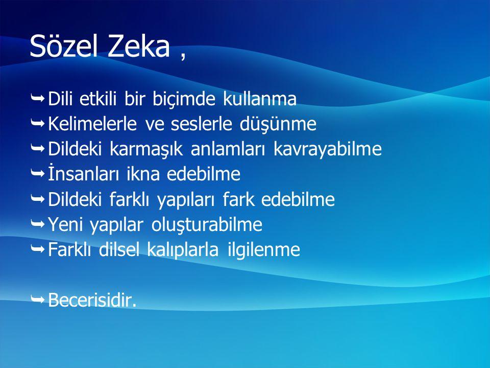 Sözel Zeka , Dili etkili bir biçimde kullanma