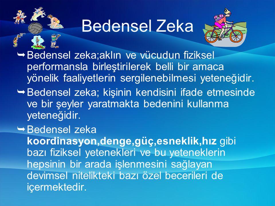 Bedensel Zeka