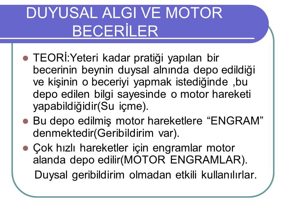 DUYUSAL ALGI VE MOTOR BECERİLER
