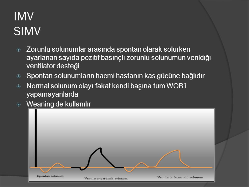 IMV SIMV Zorunlu solunumlar arasında spontan olarak solurken ayarlanan sayıda pozitif basınçlı zorunlu solunumun verildiği ventilatör desteği.