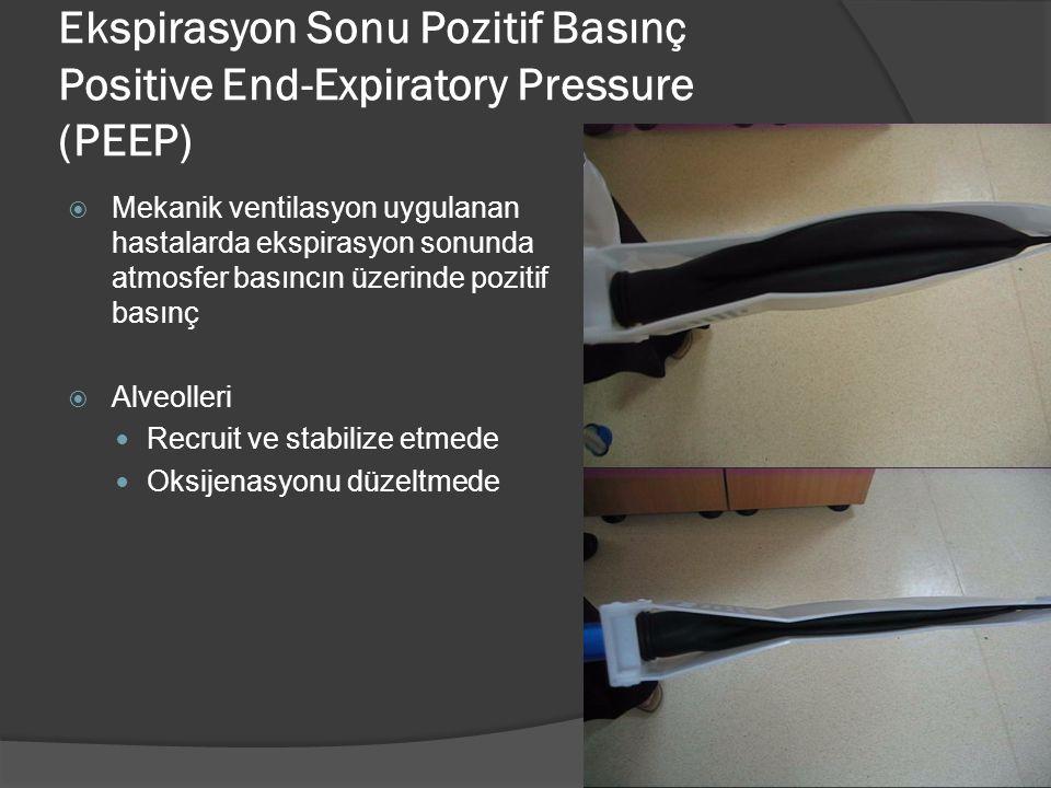 Ekspirasyon Sonu Pozitif Basınç Positive End-Expiratory Pressure (PEEP)