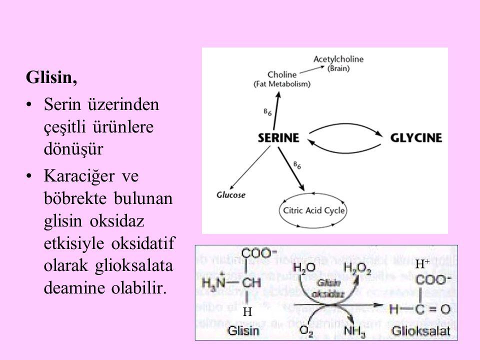 Glisin, Serin üzerinden çeşitli ürünlere dönüşür.