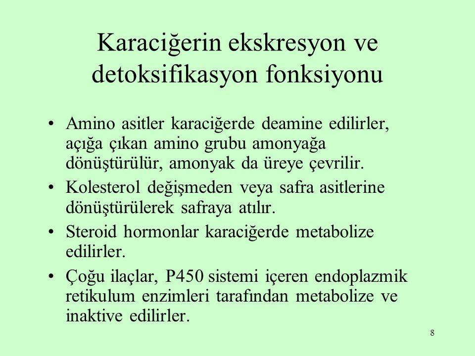 Karaciğerin ekskresyon ve detoksifikasyon fonksiyonu