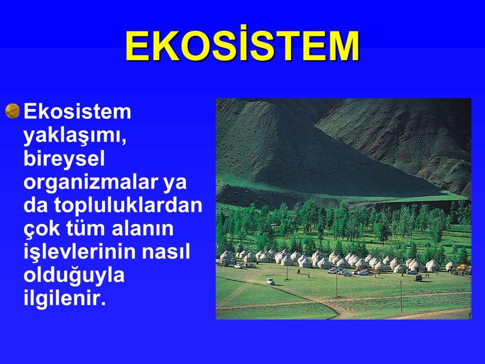EKOSİSTEM Ekosistem yaklaşımı, bireysel organizmalar ya da topluluklardan çok tüm alanın işlevlerinin nasıl olduğuyla ilgilenir.