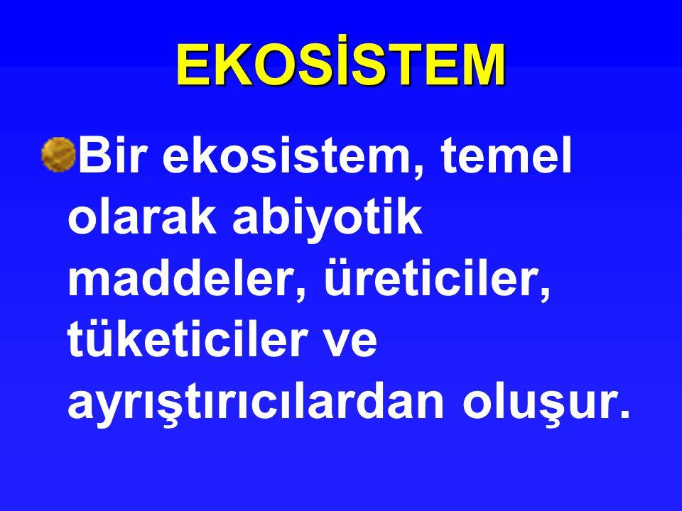 EKOSİSTEM Bir ekosistem, temel olarak abiyotik maddeler, üreticiler, tüketiciler ve ayrıştırıcılardan oluşur.