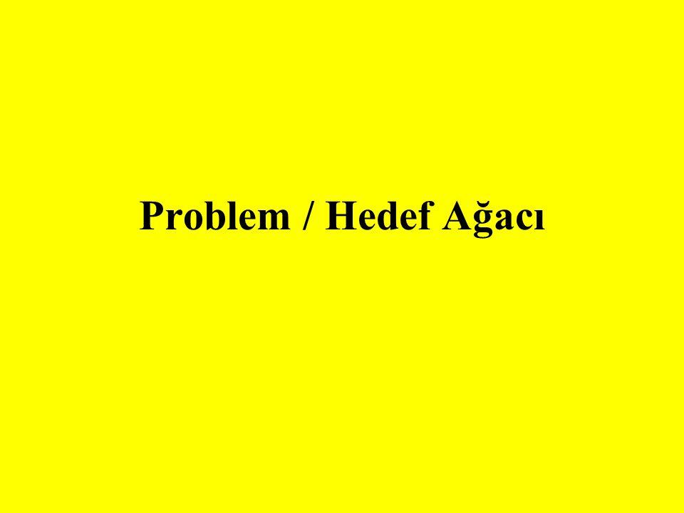 Problem / Hedef Ağacı