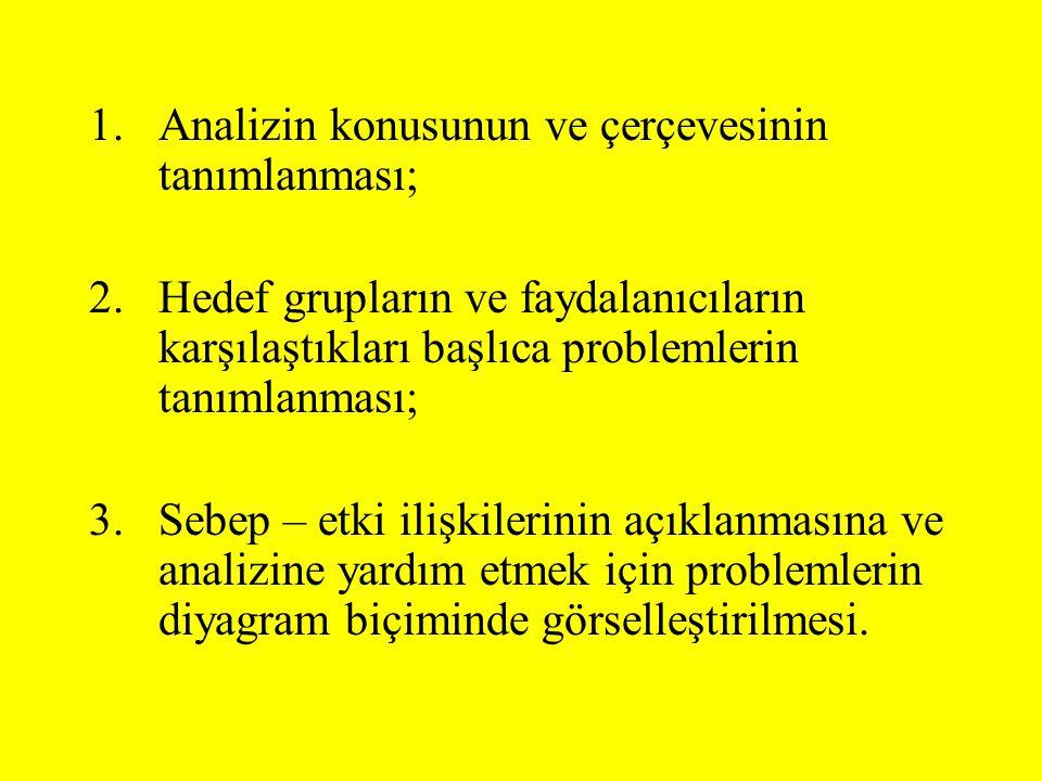 Analizin konusunun ve çerçevesinin tanımlanması;