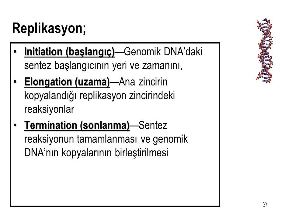 Replikasyon; Initiation (başlangıç)—Genomik DNA'daki sentez başlangıcının yeri ve zamanını,